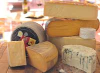 cheese-rounds
