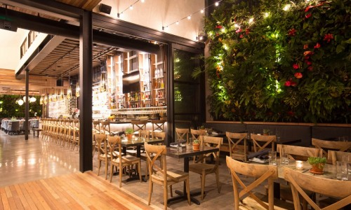 The Patio's Newest Restaurant Now Accepting Reservations